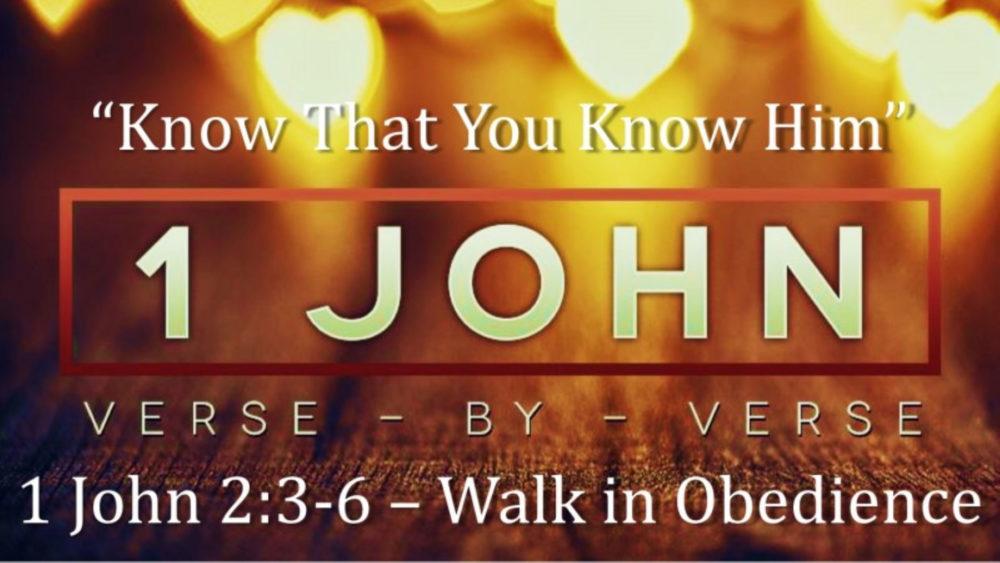 1 John 2 V3-6
