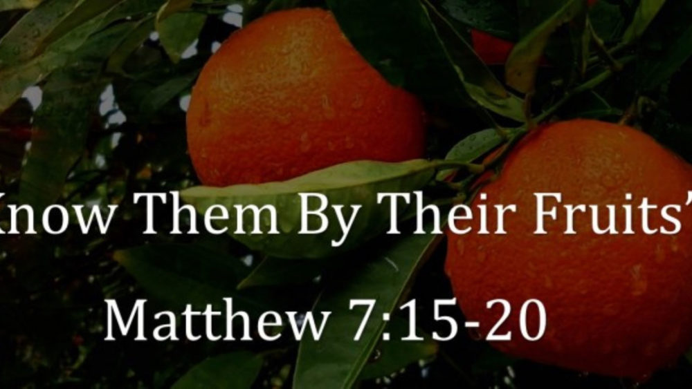 Matthew 7 V15 20 By Their Fruits