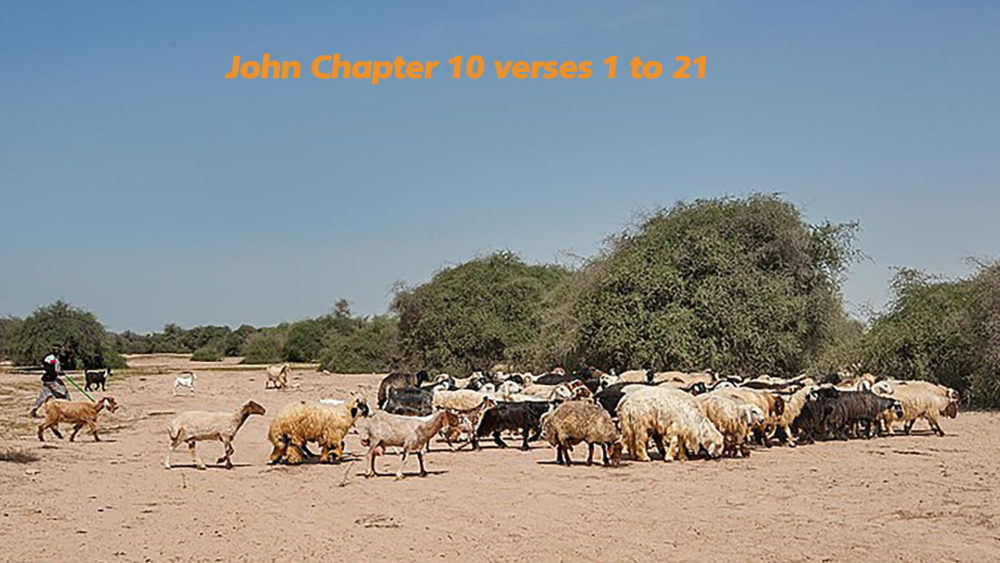 John 10 v 1 to 21
