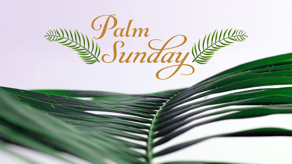 Daniel 9 and Palm Sunday Image